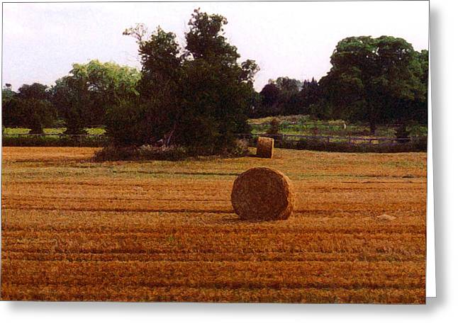 Greeting Card featuring the photograph Hay Rolls 2 Db  2 by Lyle Crump