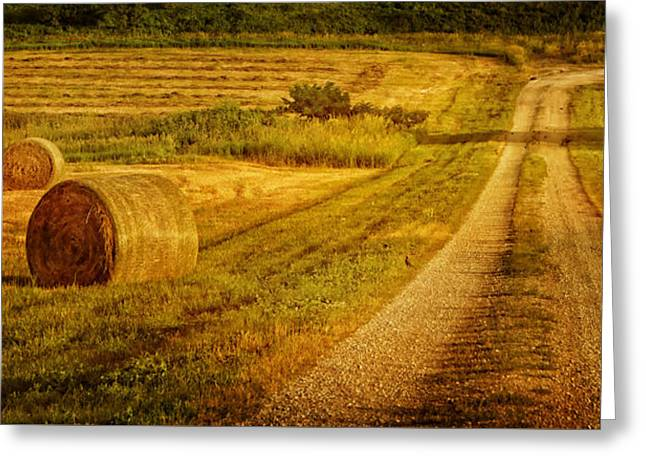 Hay Rolls - Country Road Greeting Card by Nikolyn McDonald