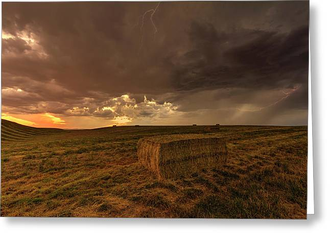 Hay Storm Greeting Card by Mark Kiver