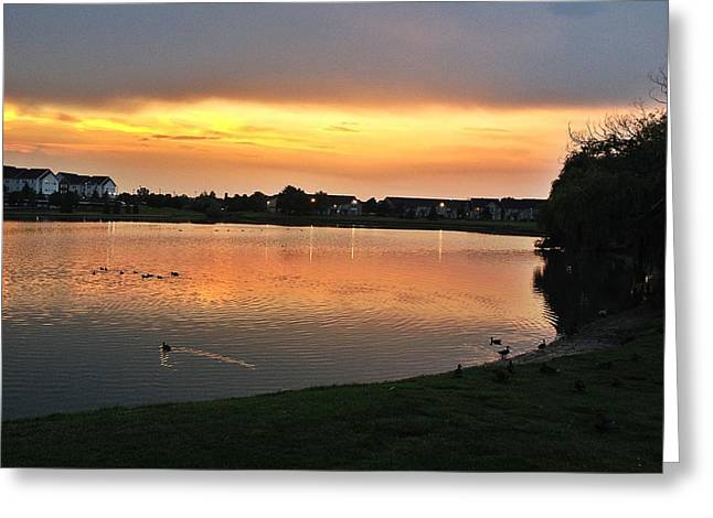 Hayes Greeting Card by 2141 Photography
