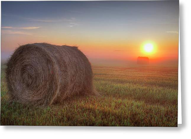 Hayrise Greeting Card by Dan Jurak