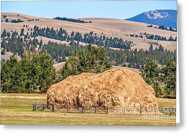 Greeting Card featuring the photograph Haystack Created With A Beaverslide by Sue Smith