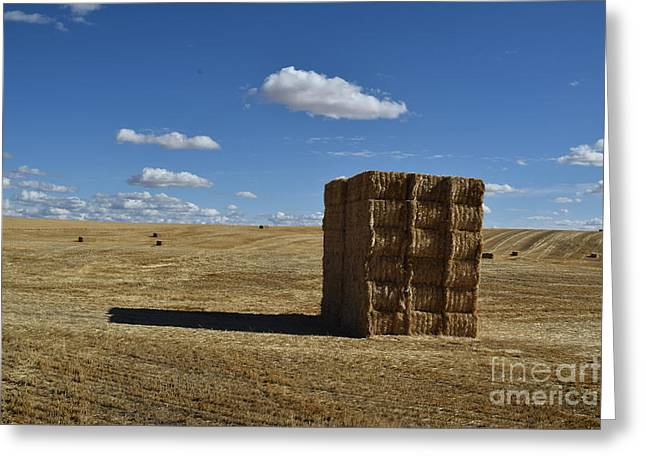 Haystack Off Hwy 2 Greeting Card