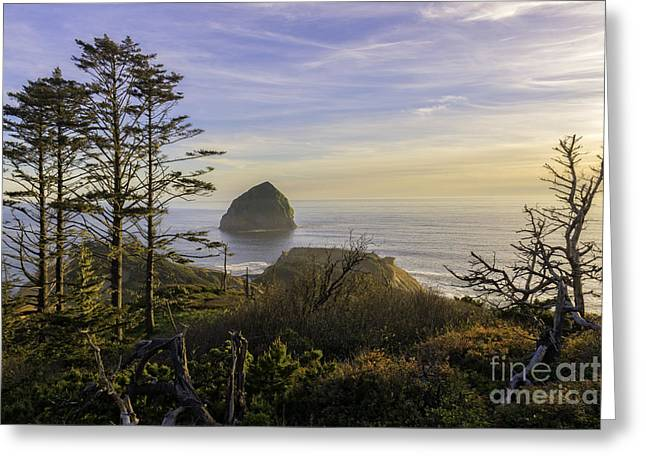 Haystack Rock At Evening's Calm Greeting Card by Moore Northwest Images