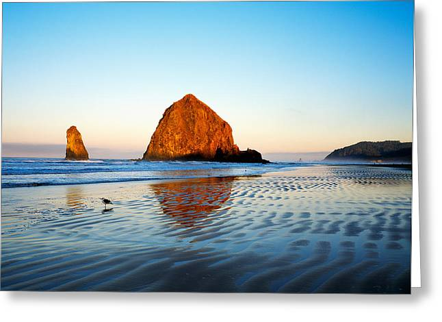 Haystack Rock Greeting Card by Panoramic Images