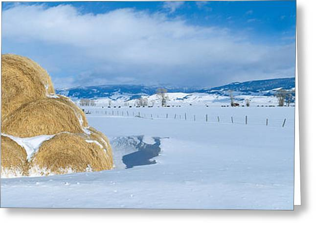 Haystacks And Snow, Moose-wilson Road Greeting Card by Panoramic Images