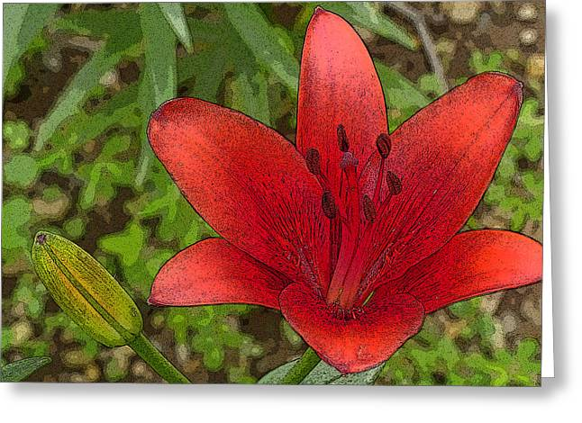 Hazelle's Red Lily Greeting Card