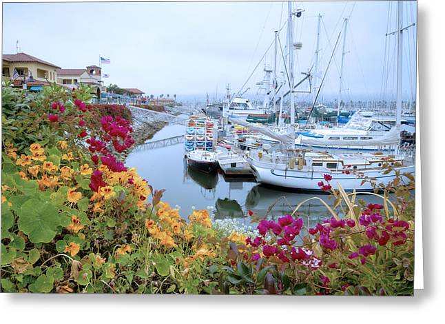 Hazy Days At The Harbor Greeting Card by Lynn Bauer