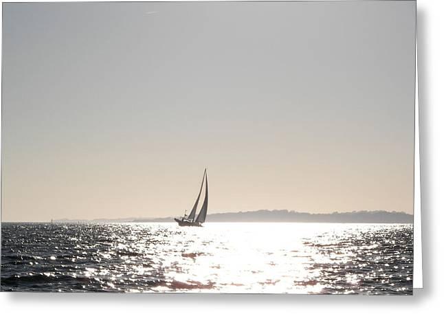 Hazy Sail Greeting Card by D Steven Brito