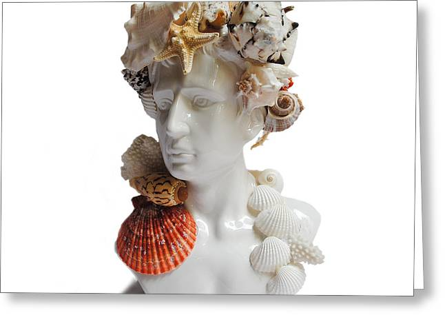 He Shell Bust Greeting Card by Denise H Cooperman