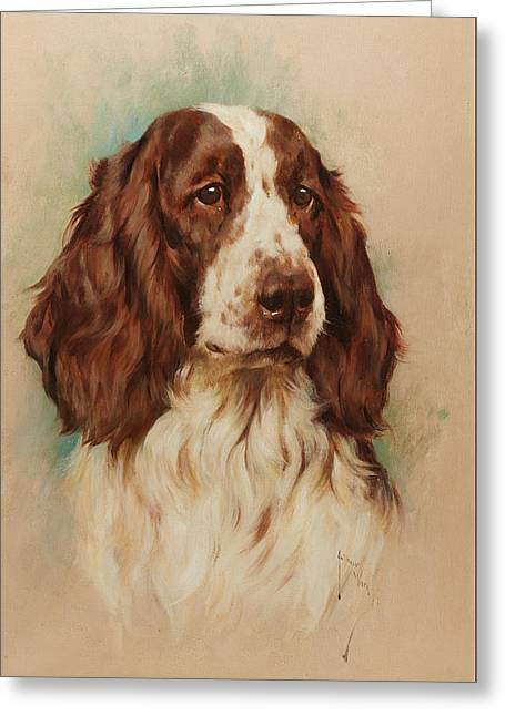 Head Of An English Springer Spaniel Greeting Card