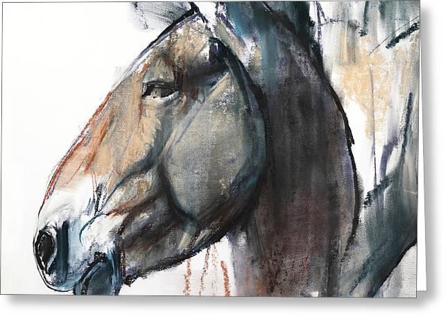 Head Study, Przewalski Greeting Card by Mark Adlington