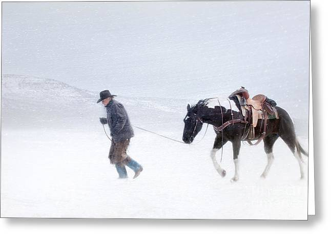 Blowing Snow Greeting Cards - Headed Home Greeting Card by Heather Swan