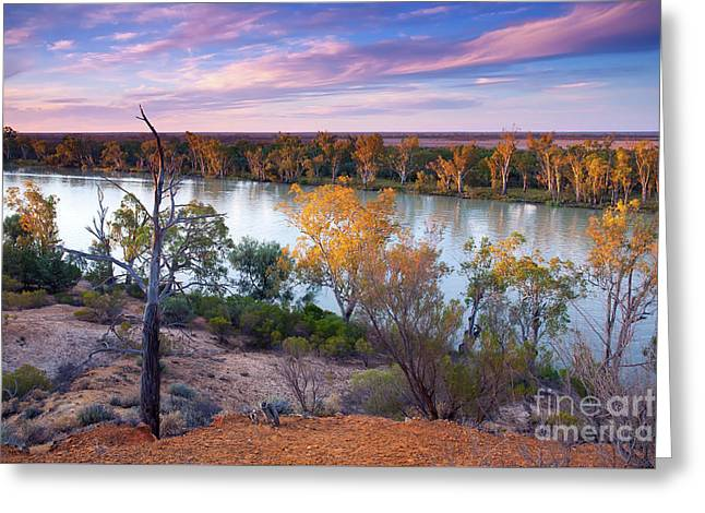 Heading Cliffs Murray River South Australia Greeting Card by Bill Robinson