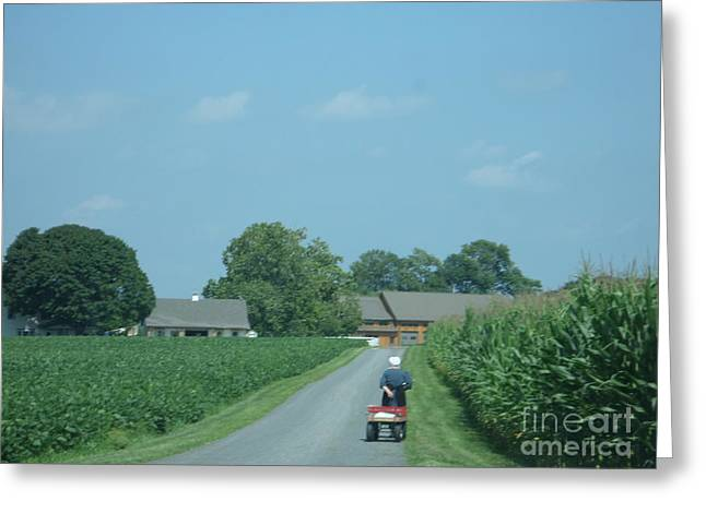 Heading Home From The Market Greeting Card