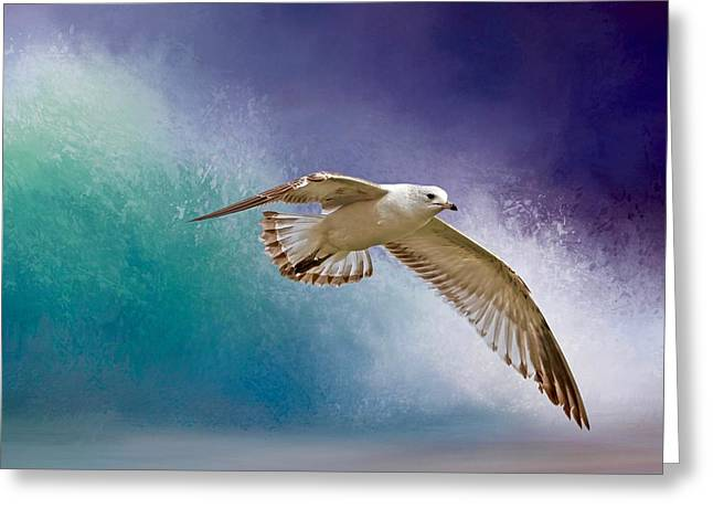 Heading To Shore Greeting Card by Donna Kennedy