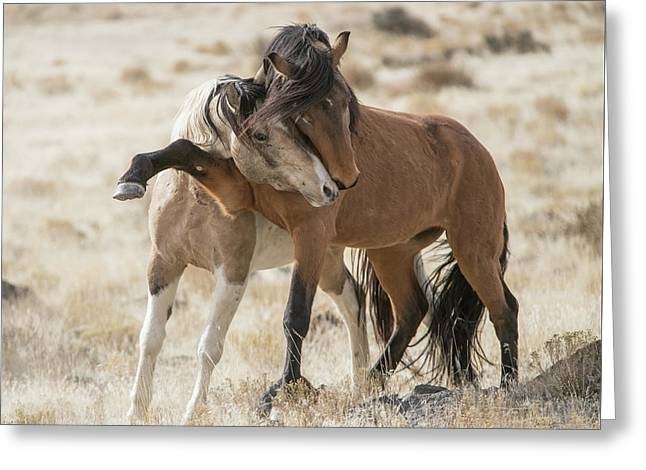 Headlock Greeting Card