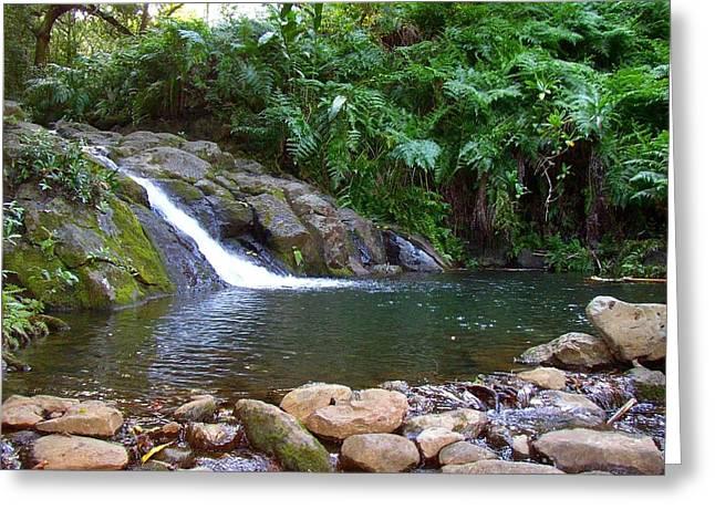 Healing Pool - Maui Hawaii Greeting Card