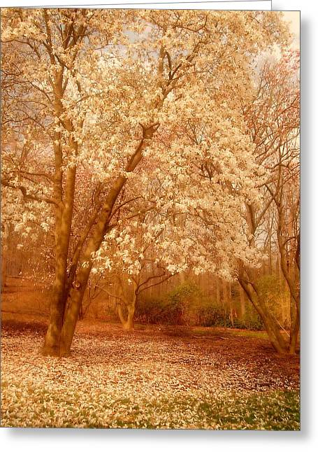 Hear The Silence - Holmdel Park Greeting Card by Angie Tirado