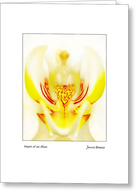 Greeting Card featuring the photograph Heart Of An Alien by Jennie Breeze