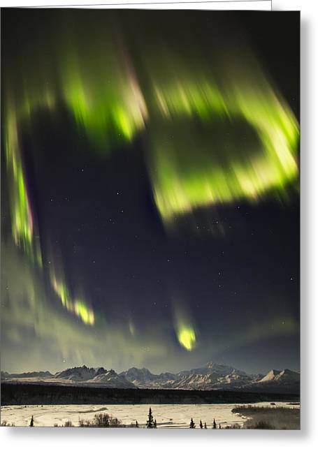 Heart Of Denali Greeting Card by Ed Boudreau