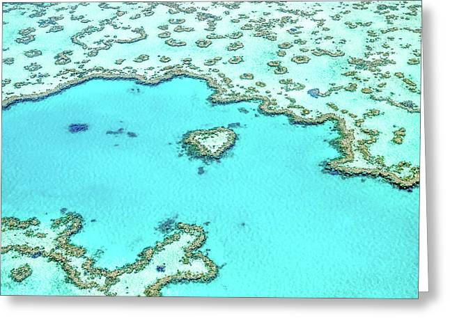 Heart Of The Reef Greeting Card by Az Jackson