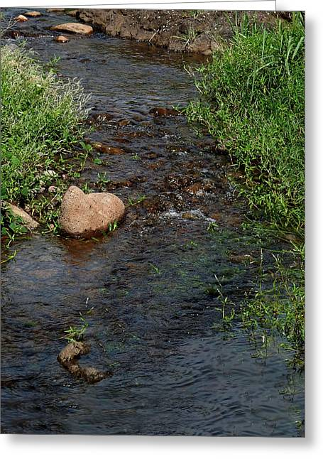 Heart Of The Stream Greeting Card