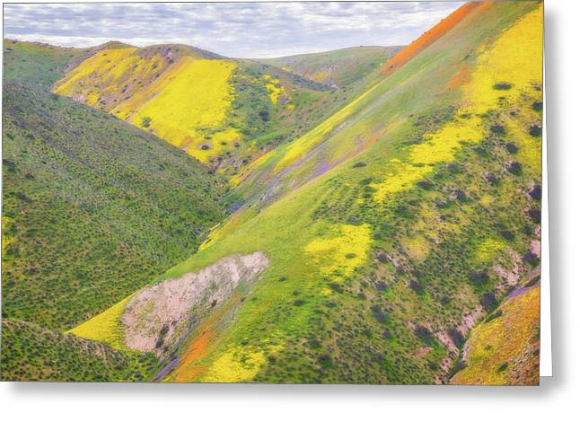 Greeting Card featuring the photograph Heart Of The Temblor Range by Marc Crumpler