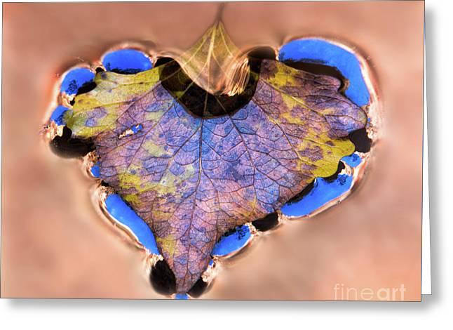 Heart Of Zion Utah Adventure Landscape Art By Kaylyn Franks Greeting Card