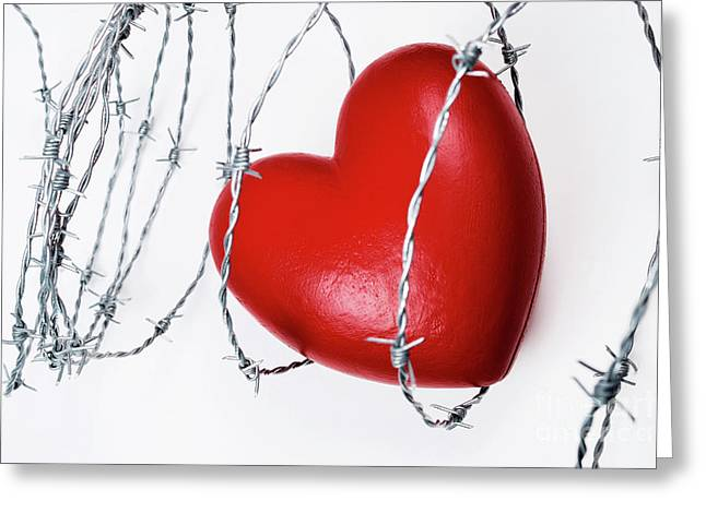 Heart Shape Surrounded With Barbed Wire Greeting Card