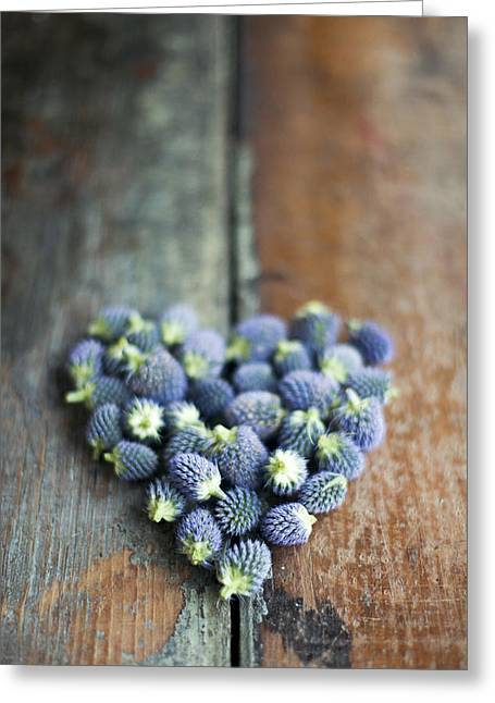 Heart Shaped Blue Thistle Buds Greeting Card