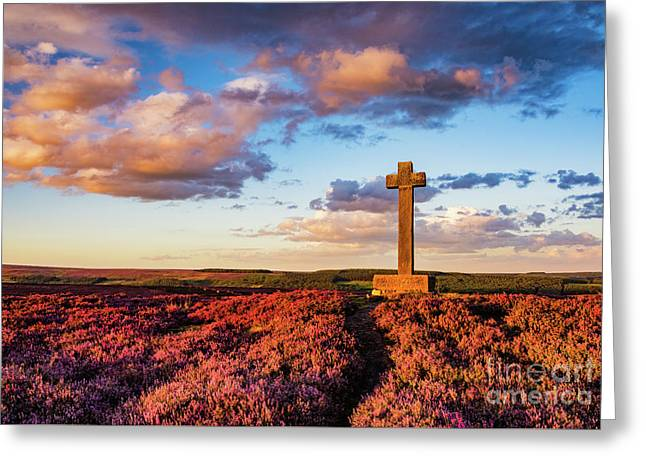 Heather At Sunset At Ana Cross Greeting Card by Janet Burdon