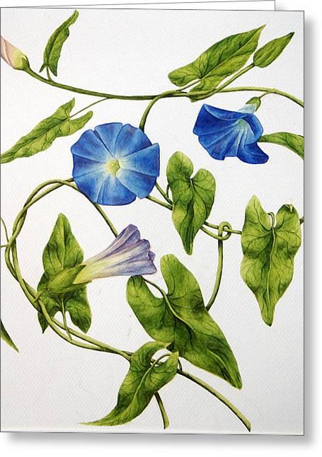 Heavenly Blue Morning Glory Greeting Card by Veronika Logar