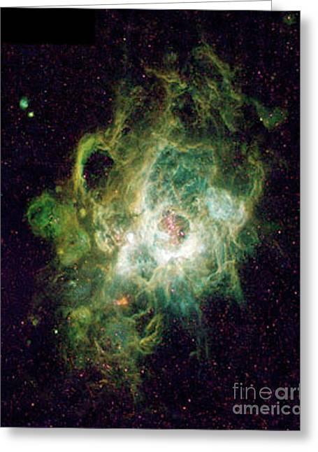 Heavenly Body  Triangulum Nebula Greeting Card