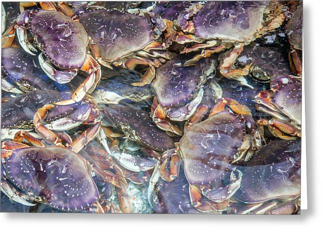 Heavenly Crabs Greeting Card