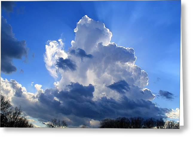 Greeting Card featuring the photograph Heavenly Sunlight by Kathryn Meyer