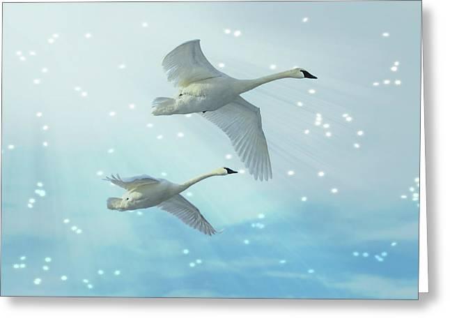 Heavenly Swan Flight Greeting Card