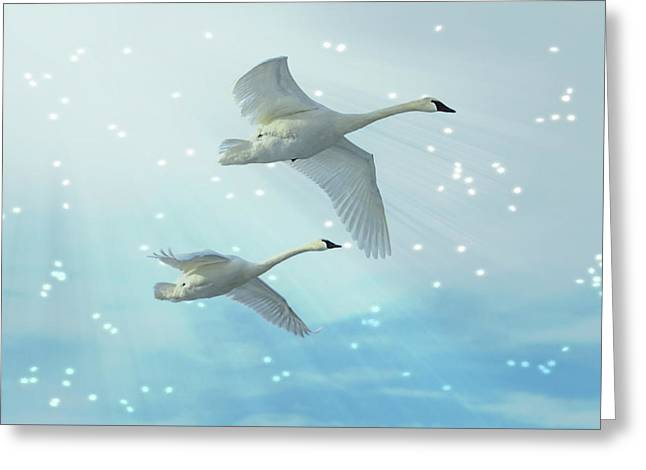 Heavenly Swan Flight Greeting Card