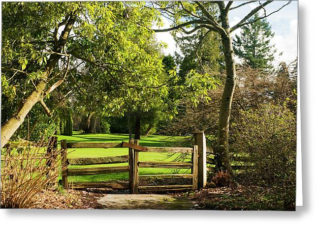 Lush Green Greeting Cards - Heavens Gate Greeting Card by Peter Olsen