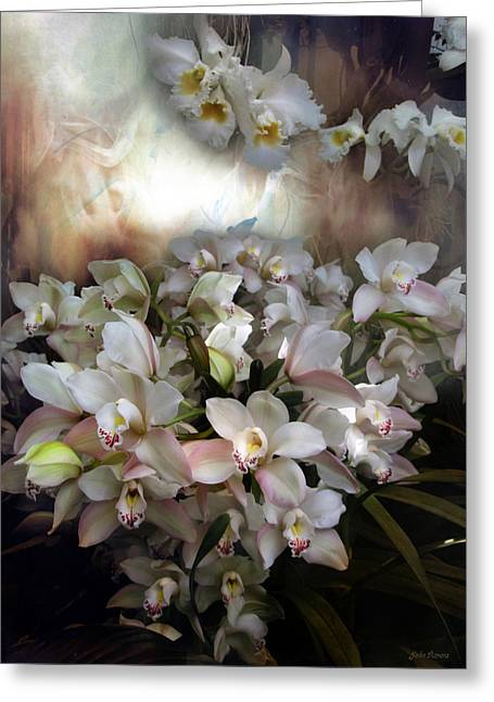 Heavens Orchids Greeting Card by John Rivera