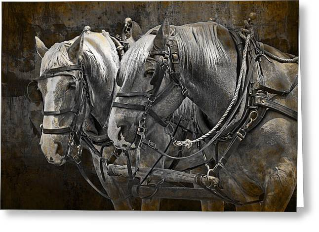Heavy Horses Greeting Card by Randall Nyhof