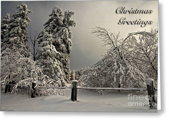 Heavy Laden Christmas Card Greeting Card by Lois Bryan