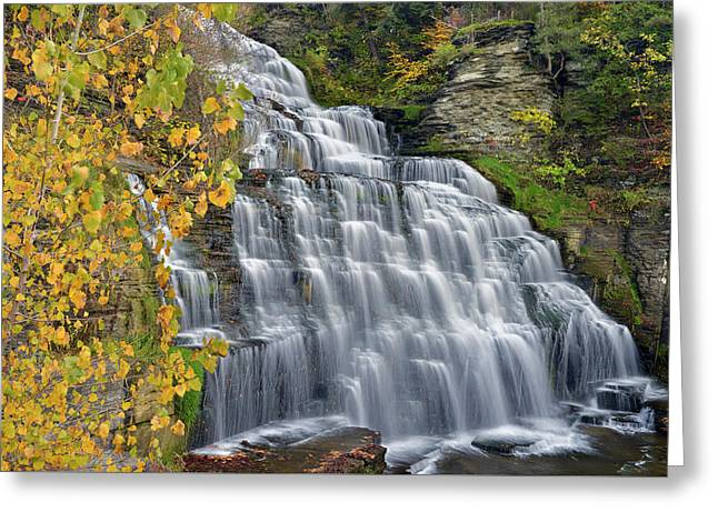 Hector Falls Fall Color Greeting Card