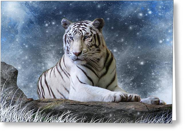 Tigers Digital Greeting Cards - Hector Greeting Card by Julie L Hoddinott