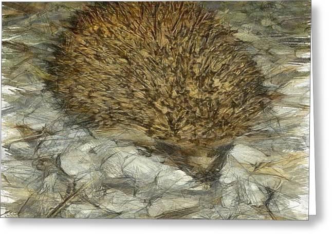 Hedgehog Greeting Card by Tracey Harrington-Simpson