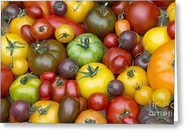 Heirloom Tomatoes Greeting Card by Tim Gainey