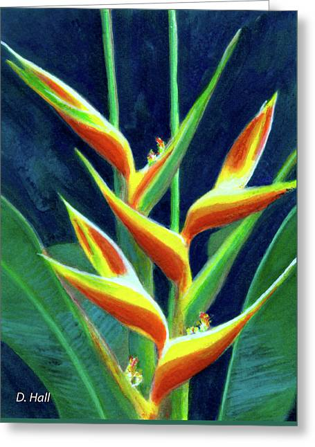 Heliconia Flowers #249 Greeting Card by Donald k Hall