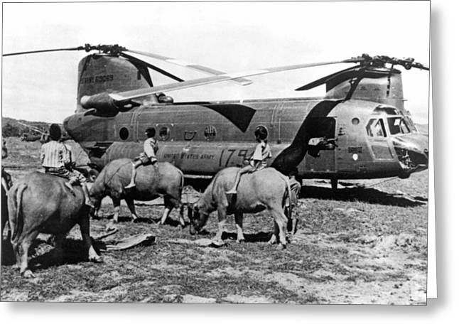 Helicopters And Water Buffalos Greeting Card by Underwood Archives