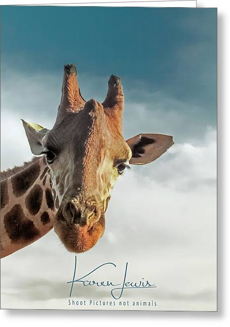 Greeting Card featuring the photograph Hello Down There by Karen Lewis