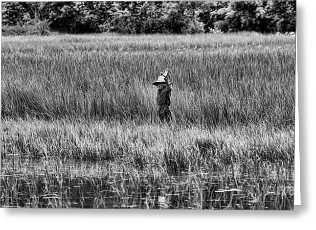 Hello Wetlands Siem Reap Greeting Card